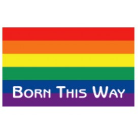"Pride Items Autocollant Rainbow ""Born This Way"" 7.6 x 5 cm"