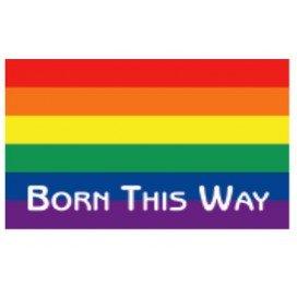 "Pride Items Autocollant Rainbow ""Born This Way"" 7.6 x 5 cm"